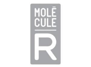 logo moleculer-yestis